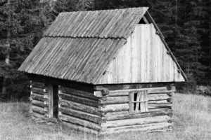 Fotografia 1751