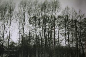 Fotografia 018