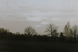 Fotografia 019
