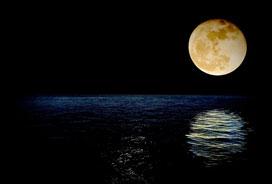 Nocne sumienie słów